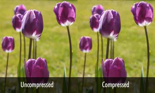 uncomp vs comp