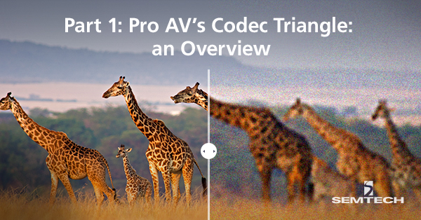 Pro-AVs-Codec-Triangle-Why-Compromise_v5